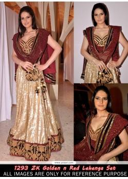 Zarine Khan Golden And Red Georgette Lehenga Choli