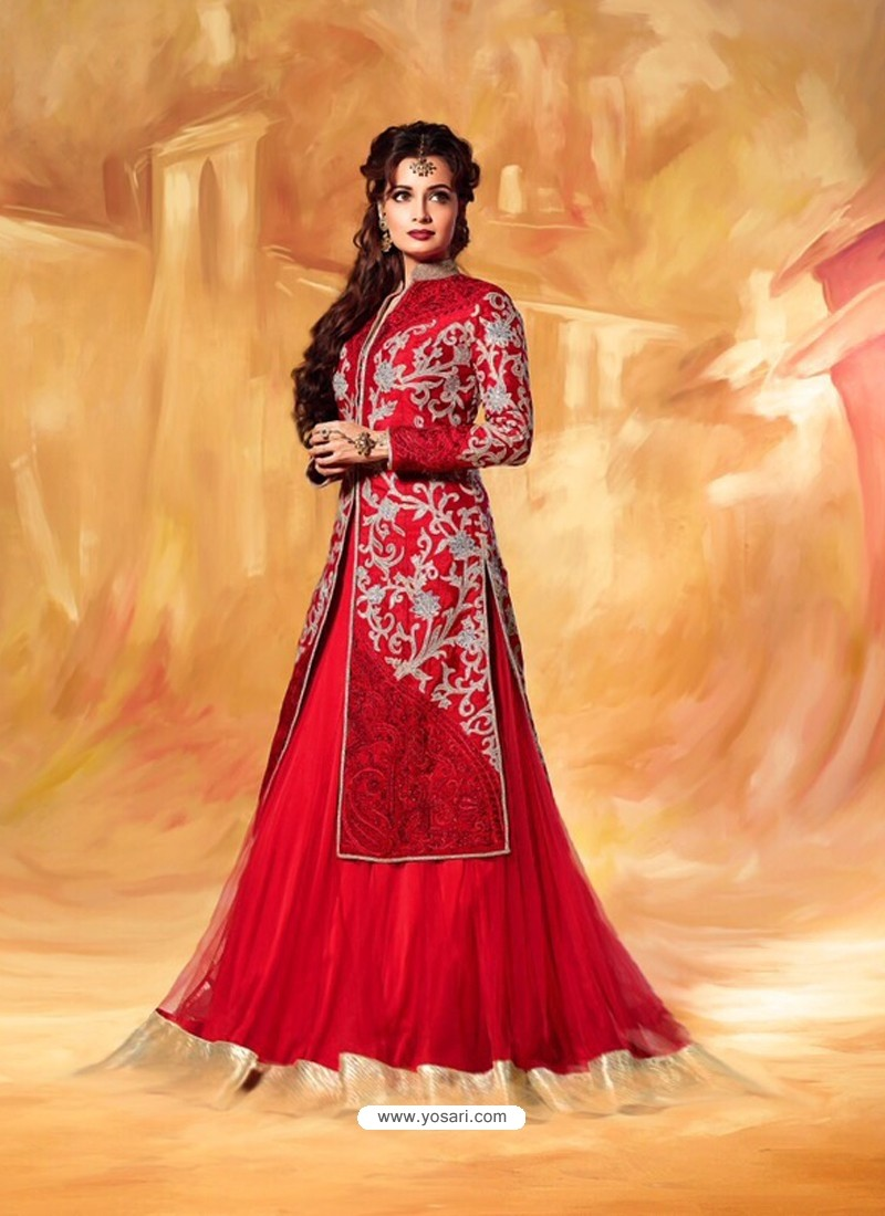 Dia Mirza Red Net Wedding Lehenga Choli
