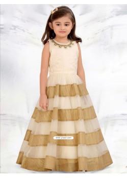 Astonishing Raw Silk N Mononet Dress