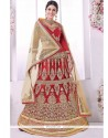 Suave Lace Work Lehenga Choli