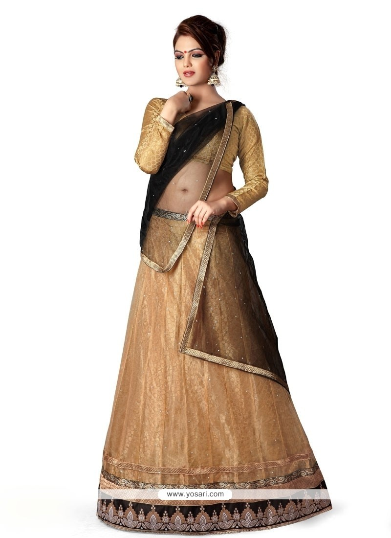 Enthralling Embroidered Work A Line Lehenga Choli
