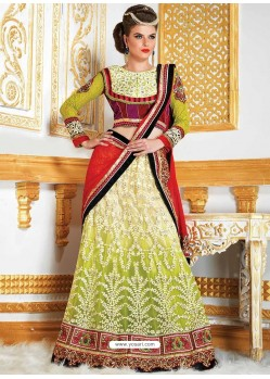 Divine Embroidered Net Lehenga Choli