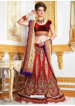 Amazing Resham Enhanced Net Lehenga Choli