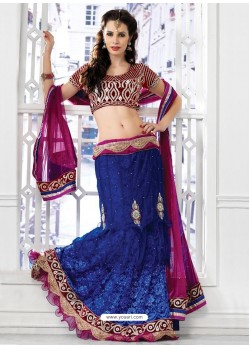 Fab Blue Appliqued Net Jacquard Lehenga Choli