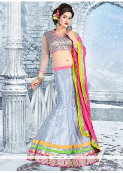 Grey Embroidered Patch Border Work Lehenga Choli