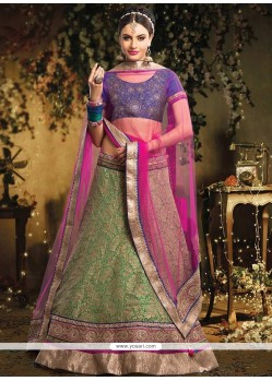 Lovely Green Patch Border Work Net Lehenga Choli