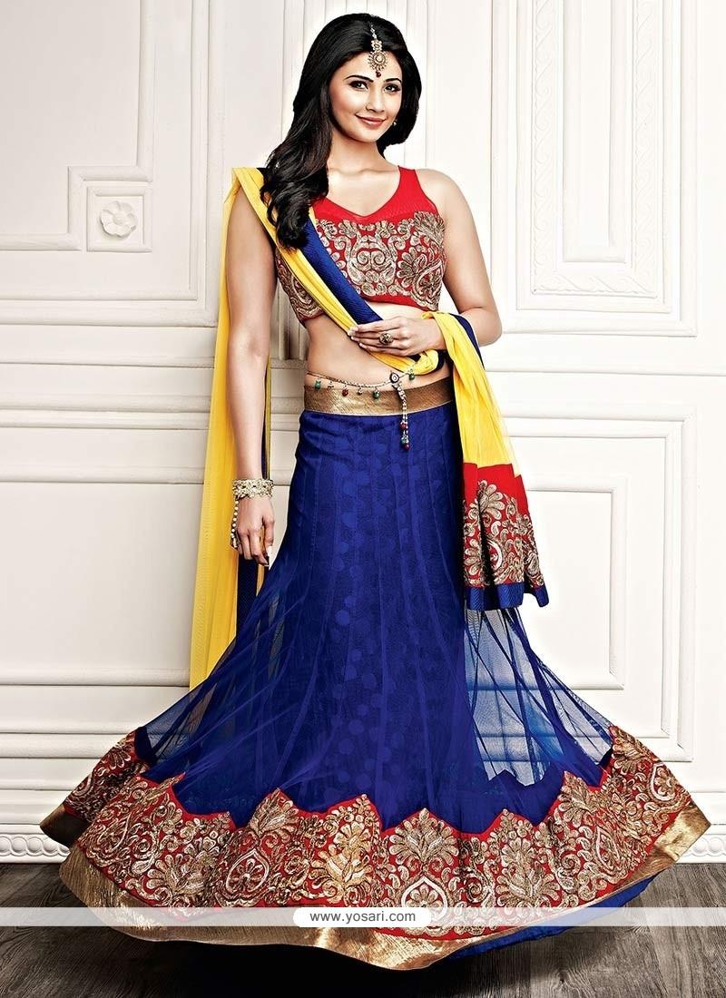 Daisy Shah Blue Net Lehenga Choli