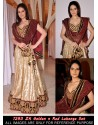 Zarine Khan Golden And Red Georgette Lehenga Choli