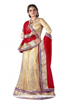 Glamorous Embroidered Work A Line Lehenga Choli