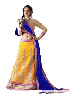 Royal Net Embroidered Work A Line Lehenga Choli