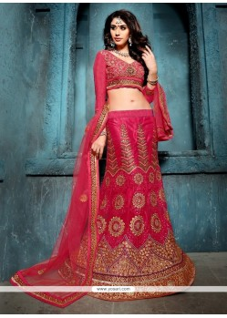 Luxurious Hot Pink Patch Border Work Net A Line Lehenga Choli