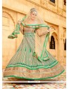 Whimsical Sea Green Anarkali Salwar Kameez