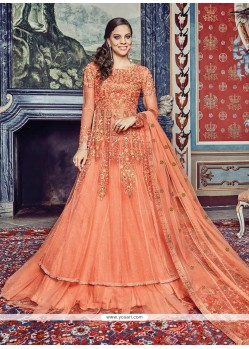 Charismatic Embroidered Work Net A Line Lehenga Choli