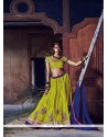 Awesome Patch Border Work A Line Lehenga Choli