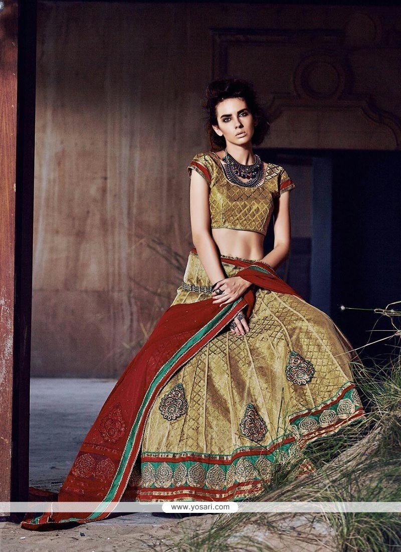 Excellent Beige Patch Border Work Net A Line Lehenga Choli