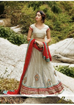 Perfect Net A Line Lehenga Choli
