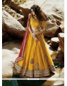 Extraordinary Net Embroidered Work A Line Lehenga Choli