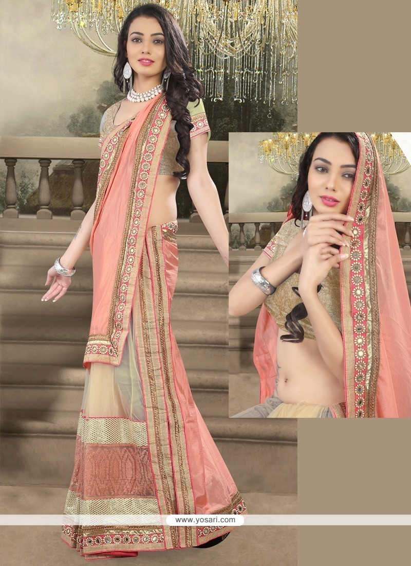 Aesthetic Net Embroidered Work Designer Saree