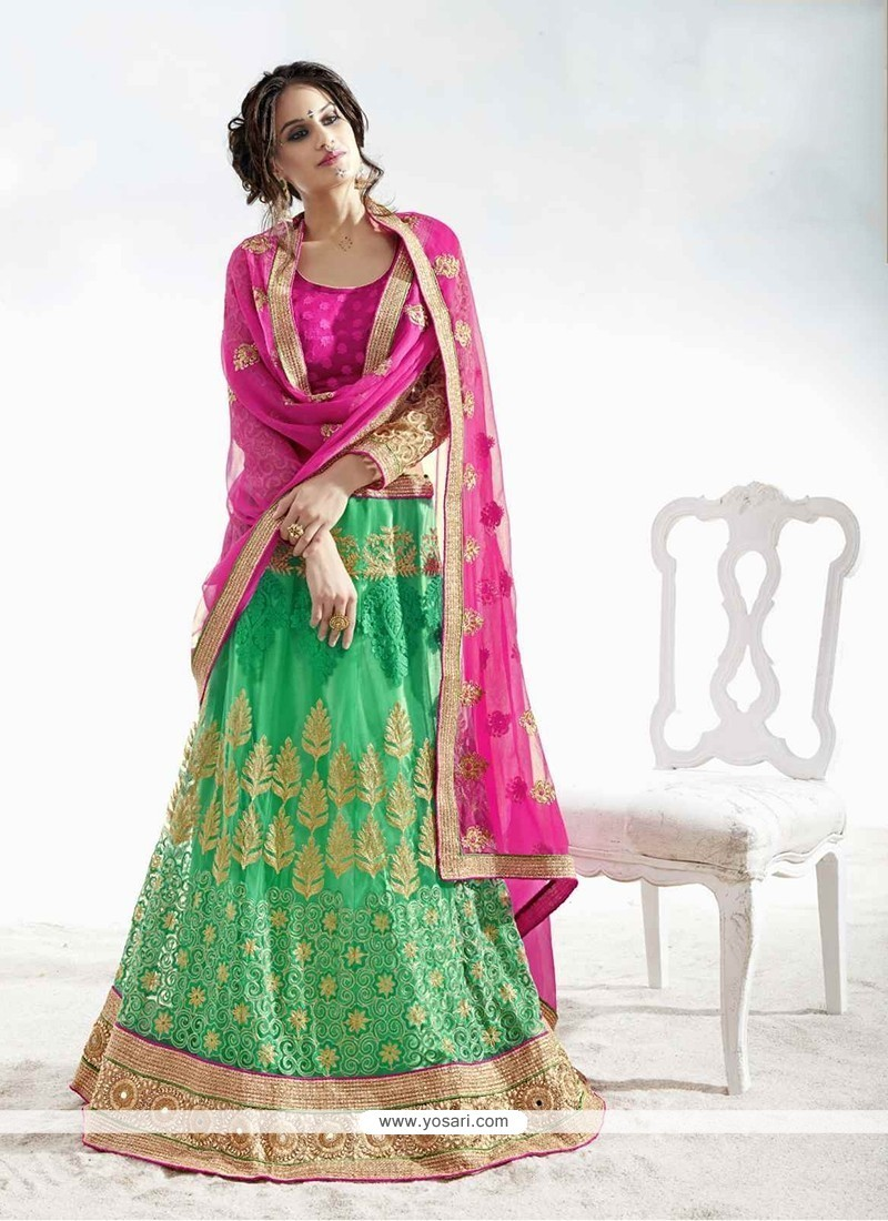 Cute Green Embroidered Work Net A Line Lehenga Choli