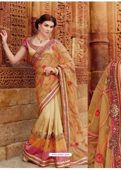 Cream And Beige Premium Net Designer Saree