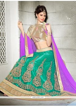 Precious Net Patch Border Work A Line Lehenga Choli