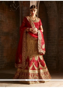 Regal Raw Silk A Line Lehenga Choli