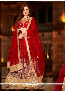 Pretty Red Patch Border Work Net Lehenga Choli