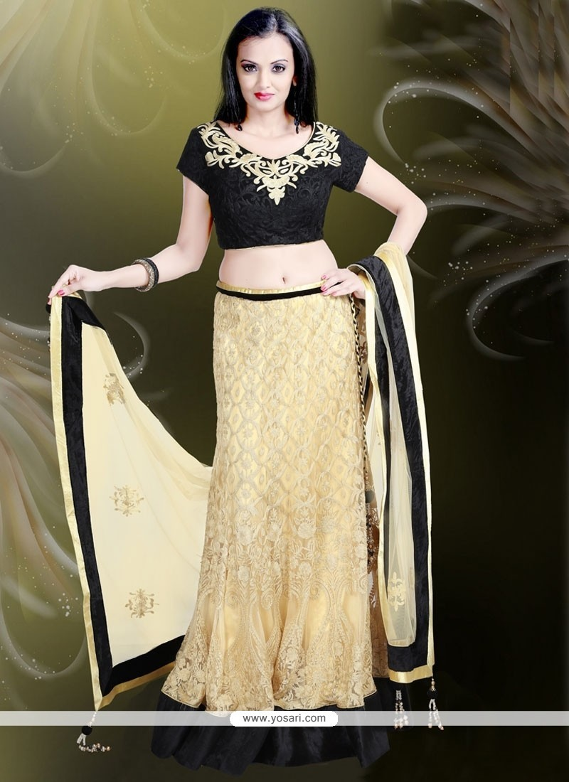 Fantastic Net Patch Border Work A Line Lehenga Choli