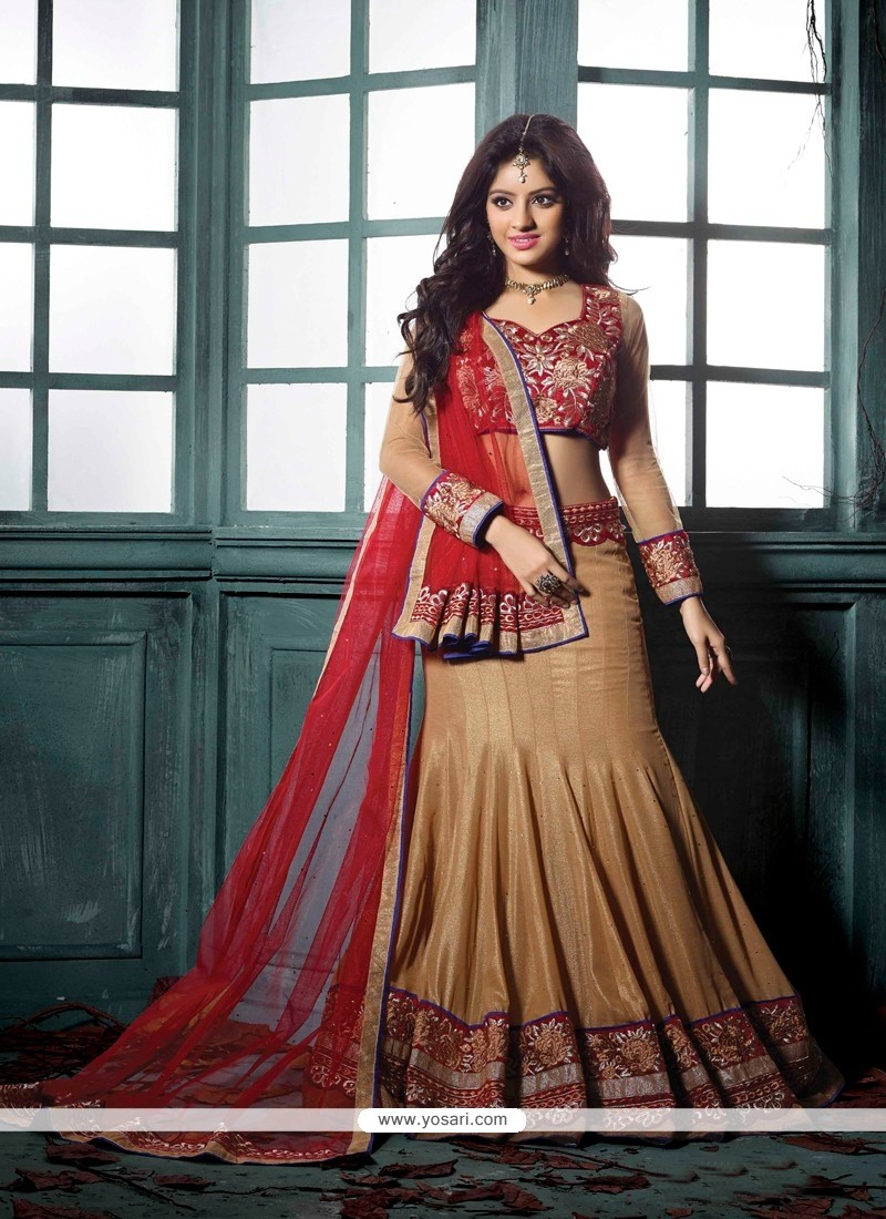 Deepika Singh Brown And Red Net Velvet Lehenga Choli