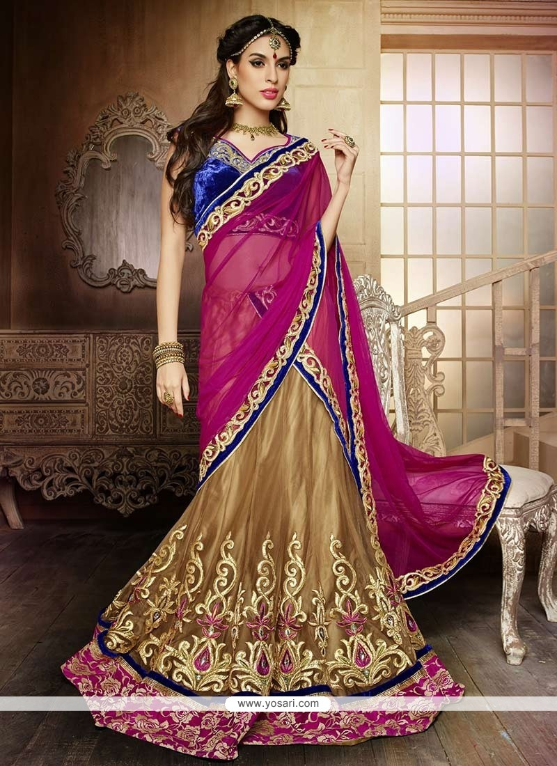 Beige Embroidery Net Lehenga Choli