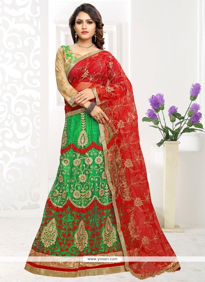 Captivating Net Embroidered Work Lehenga Choli