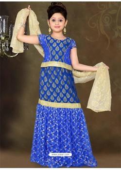 Charming Blue Lehenga Choli