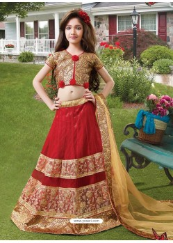 Awesome Red Resham Lehenga Choli