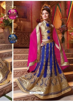 Demure Blue Readymade Lehenga Choli