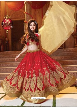 Stylish Red Lehenga Choli