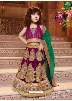 Beautiful Fuchsia Lehenga Choli