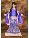 Incredible Blue Embroidered Lehenga Choli