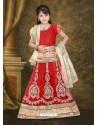Gorgeous Red Lehenga Choli