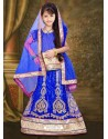 Attractive Blue Net Lehengha Choli