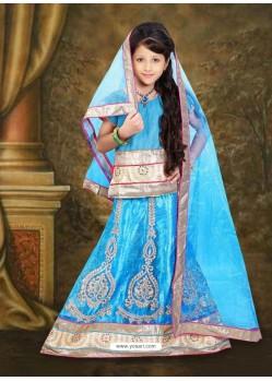 Demure Blue Lehenga Choli
