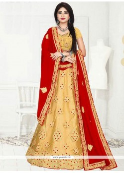 Graceful Net Embroidered Work Lehenga Choli