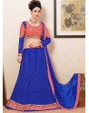 Pink And Blue Net Designer Lehenga Choli