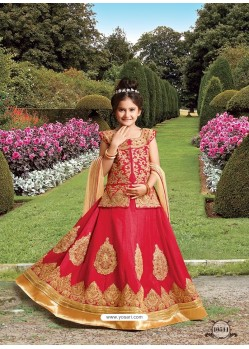 Red Silk Embroidered Lehenga Choli