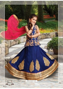 Navy Blue Silk Embroidered Lehenga Choli