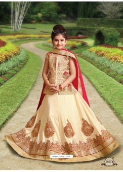 Light Beige Silk Embroidered Lehenga Choli