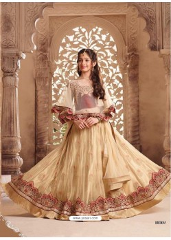 Perfect Beige Net Lehenga Choli