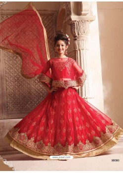 Observable Red Net Lehenga Choli