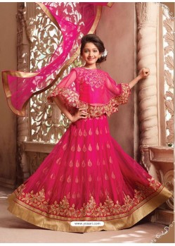 Genius Dark Peach Net Lehenga Choli