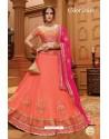 Fabulous Peach Silk Lehenga Choli