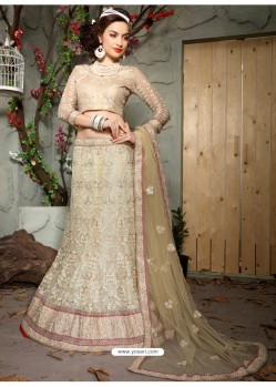 Wonderful Off White Net Embroidered Lehenga Choli